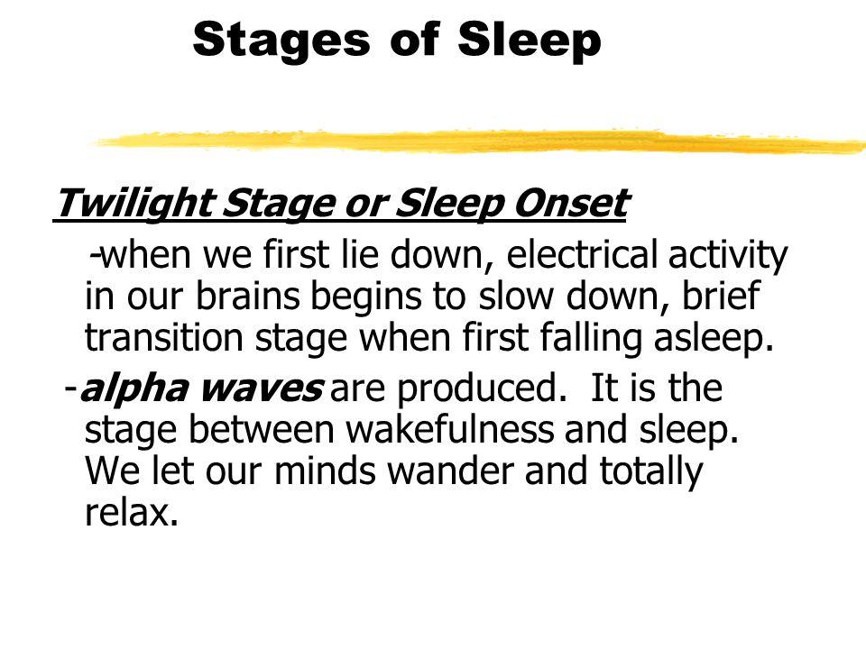 Stages of Sleep Twilight Stage or Sleep Onset