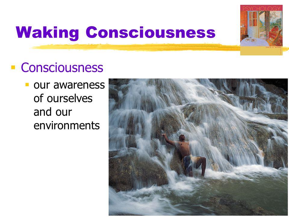 Waking Consciousness Consciousness