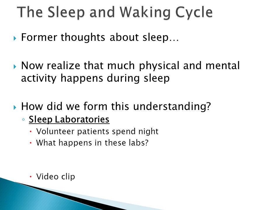 The Sleep and Waking Cycle