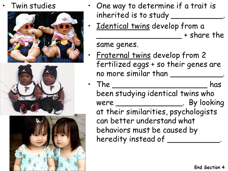 One way to determine if a trait is inherited is to study ___________.
