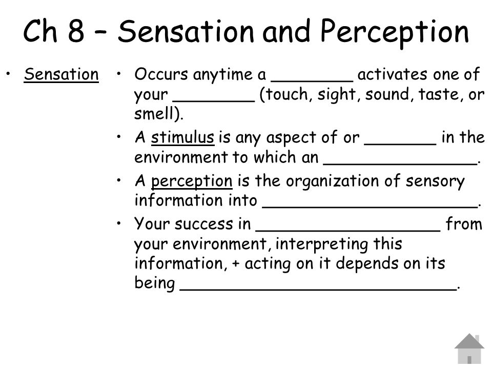 Ch 8 – Sensation and Perception