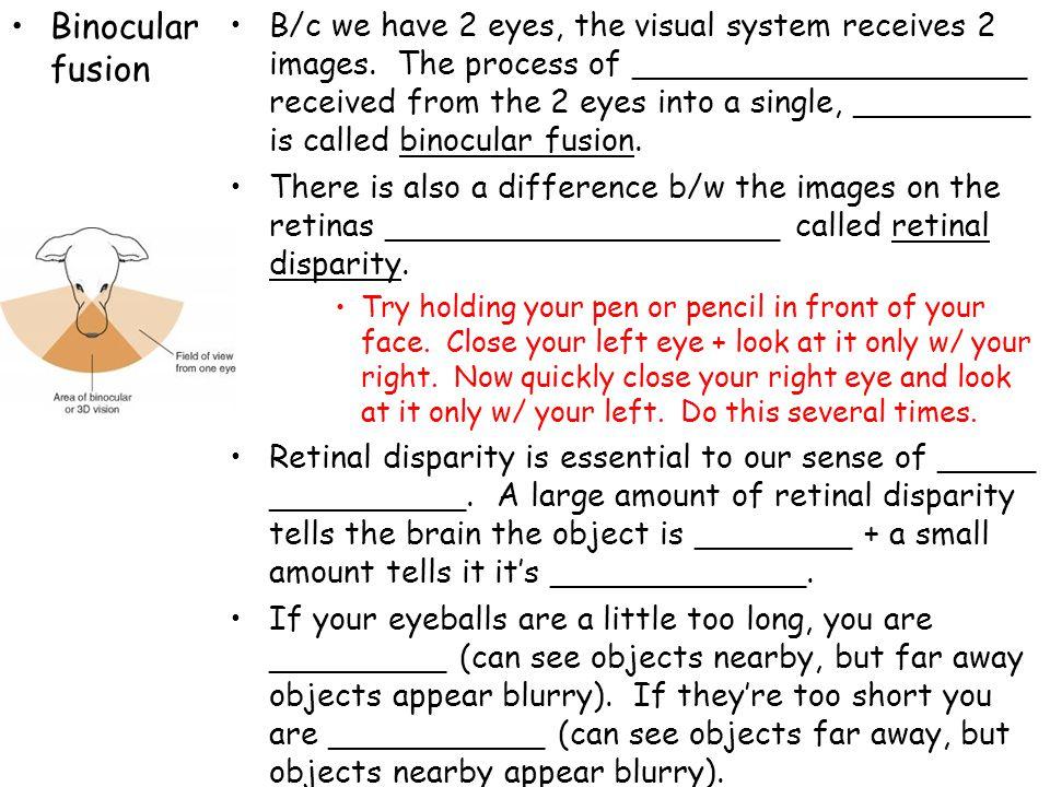 Binocular fusion