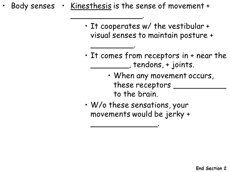 Kinesthesis is the sense of movement + _______________.