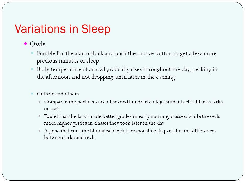 Variations in Sleep Owls