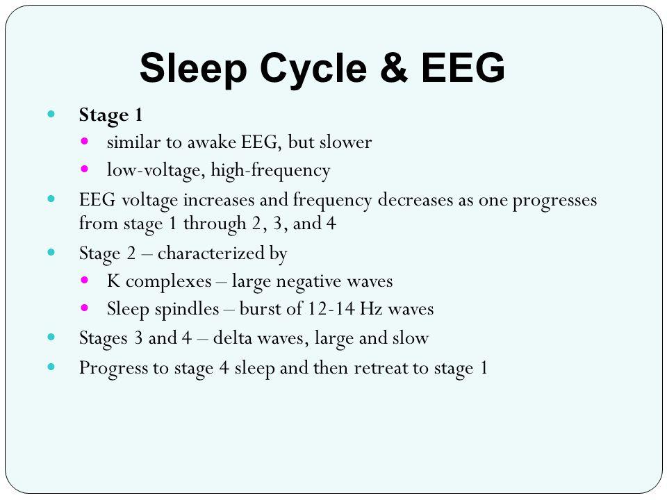 Sleep Cycle & EEG Stage 1 similar to awake EEG, but slower