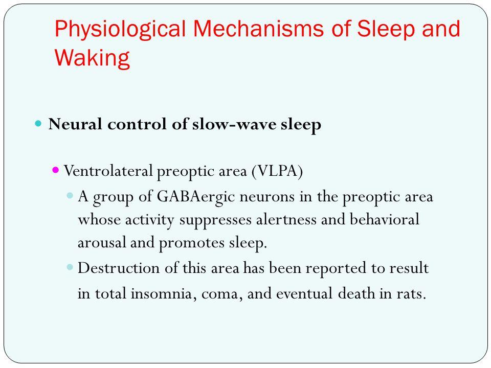 Physiological Mechanisms of Sleep and Waking