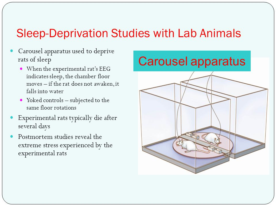 Sleep-Deprivation Studies with Lab Animals