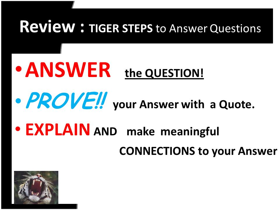 Review : TIGER STEPS to Answer Questions