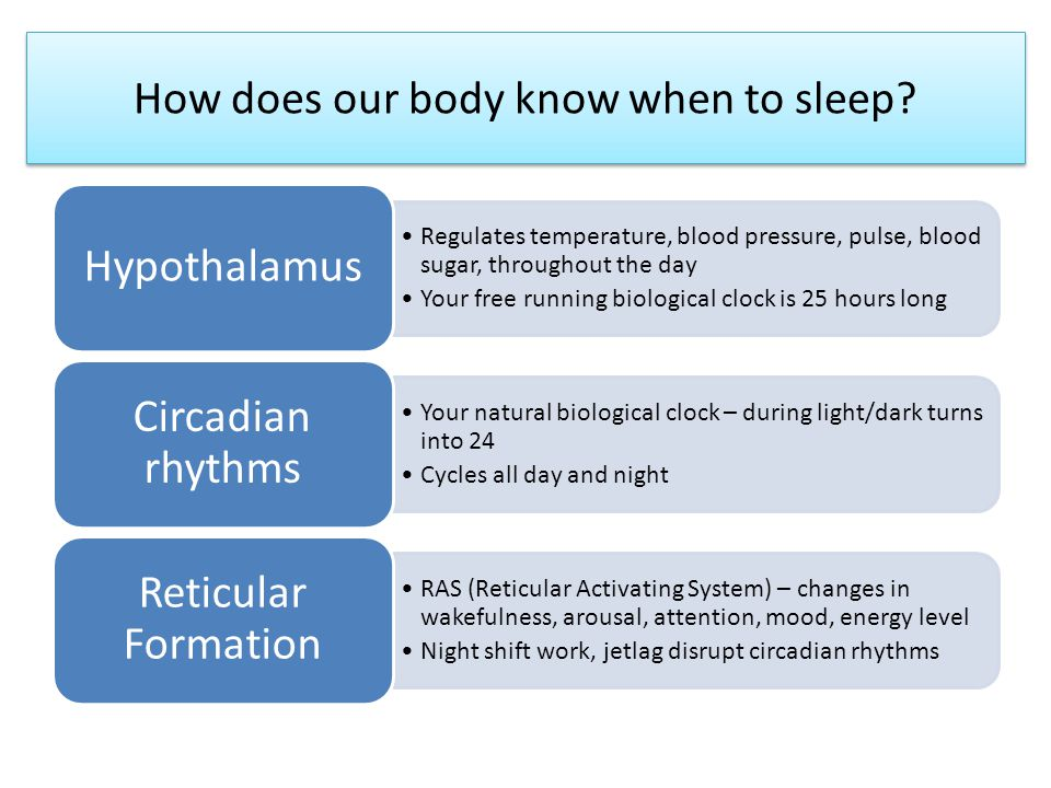How does our body know when to sleep