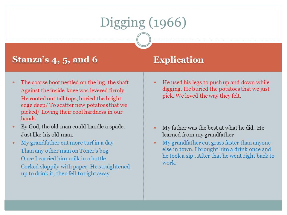 Digging (1966) Explication Stanza's 4, 5, and 6