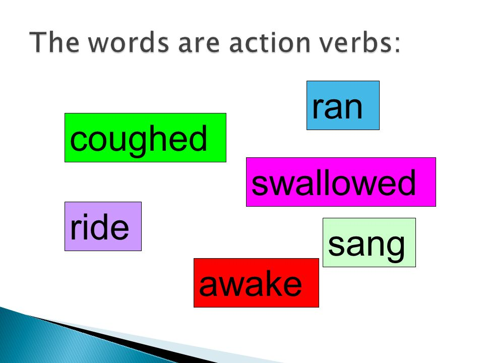 The words are action verbs: