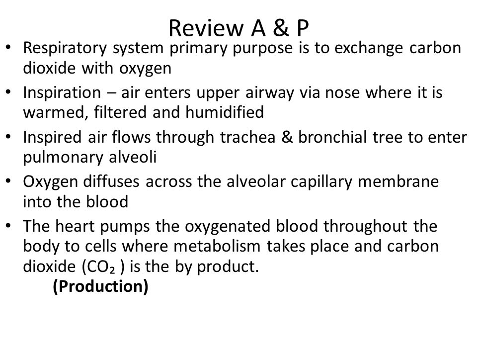 Review A & P Respiratory system primary purpose is to exchange carbon dioxide with oxygen.