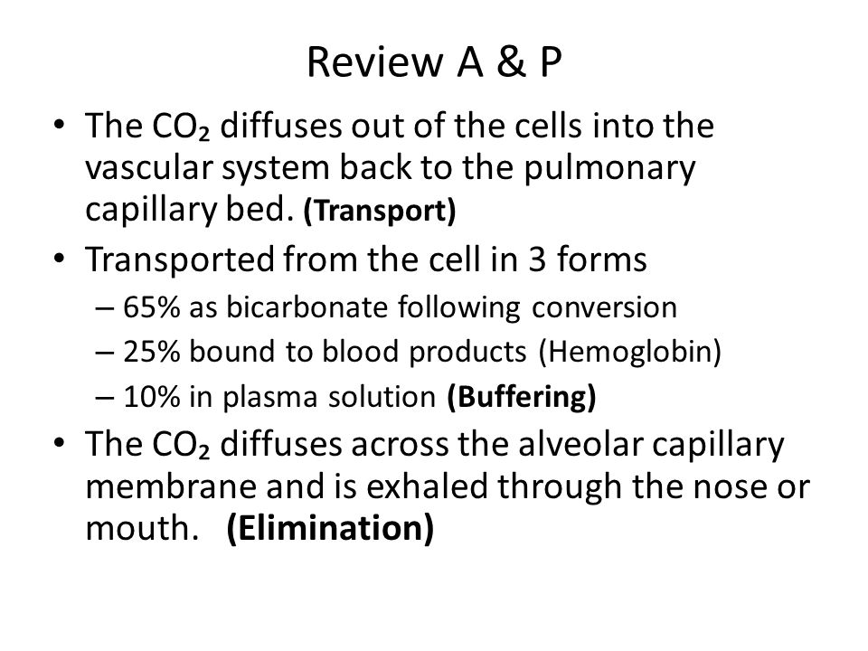 Review A & P The CO₂ diffuses out of the cells into the vascular system back to the pulmonary capillary bed. (Transport)
