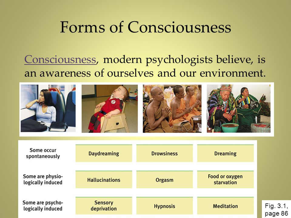 Forms of Consciousness