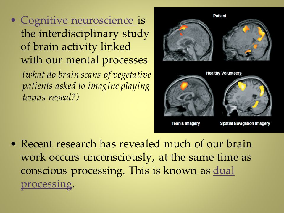 Cognitive neuroscience is the interdisciplinary study of brain activity linked with our mental processes