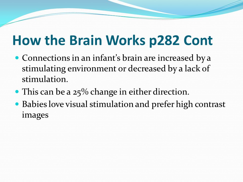 How the Brain Works p282 Cont