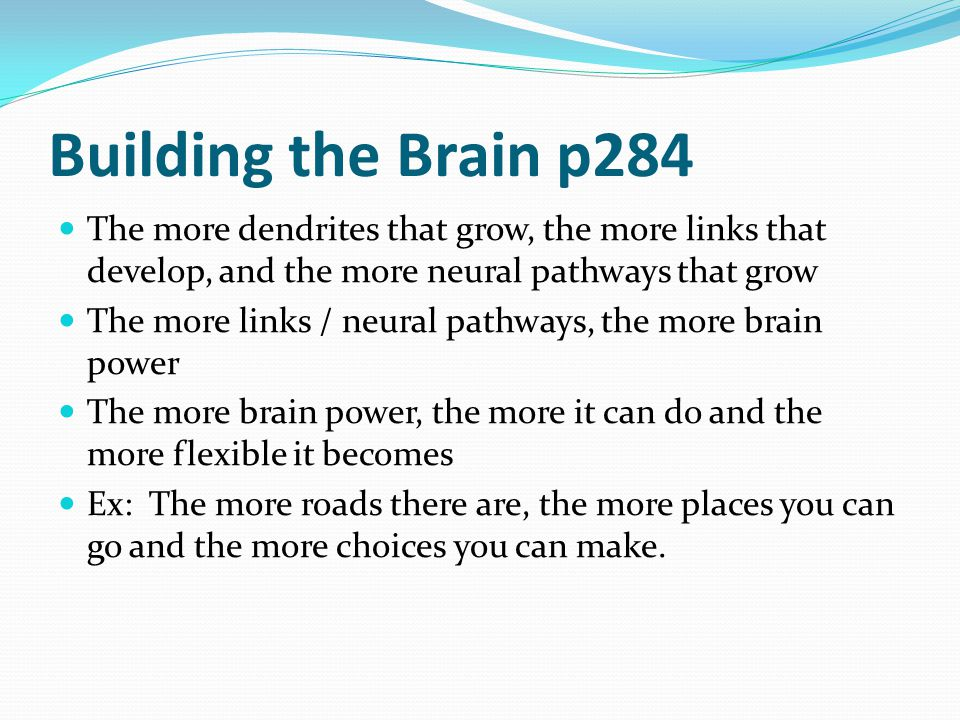 Building the Brain p284 The more dendrites that grow, the more links that develop, and the more neural pathways that grow.