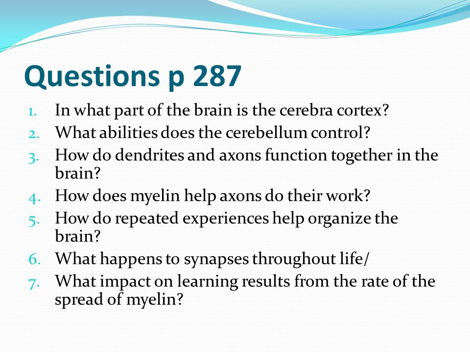 Questions p 287 In what part of the brain is the cerebra cortex