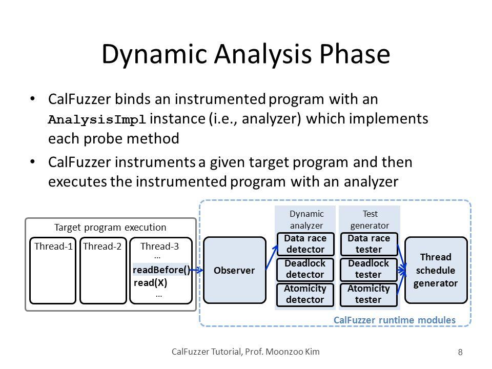 Dynamic Analysis Phase