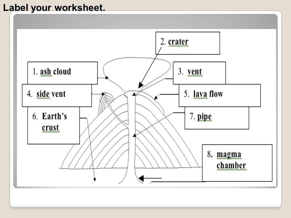 Label your worksheet.