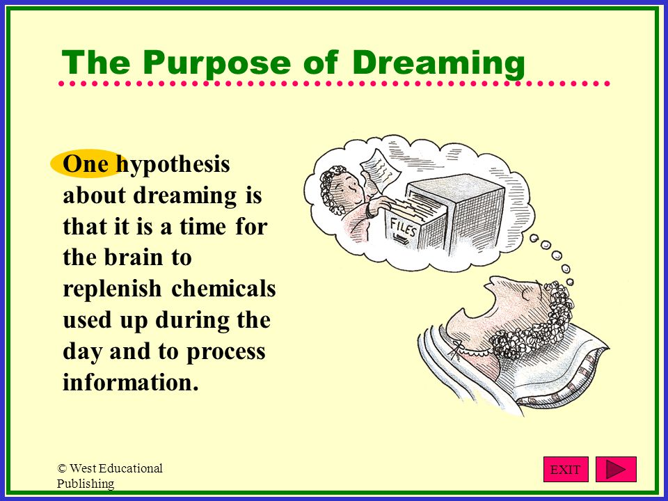 The Purpose of Dreaming