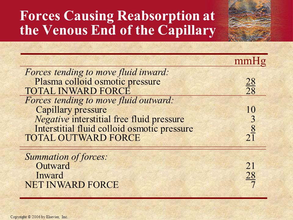 Forces Causing Reabsorption at the Venous End of the Capillary
