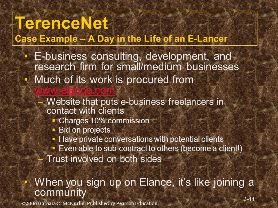 TerenceNet Case Example – A Day in the Life of an E-Lancer