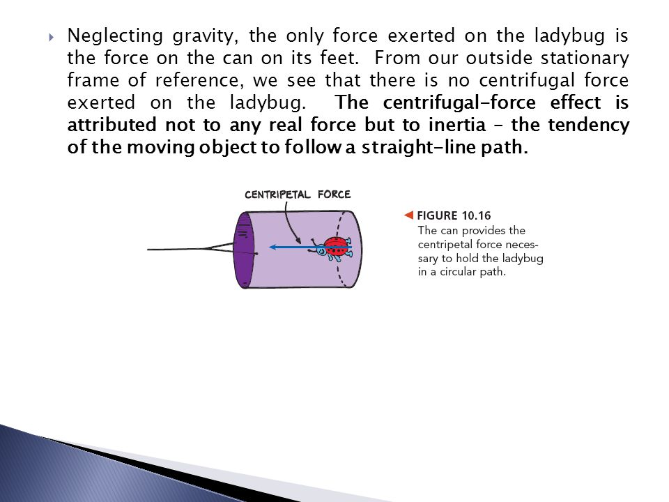Neglecting gravity, the only force exerted on the ladybug is the force on the can on its feet.