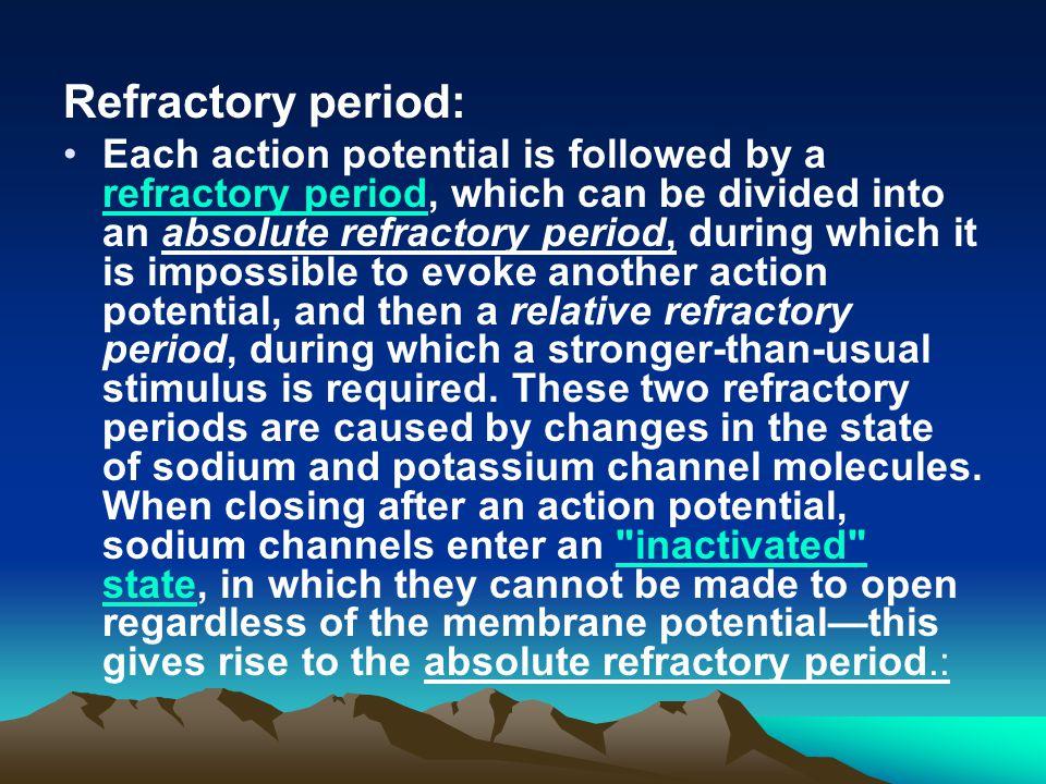 Refractory period: