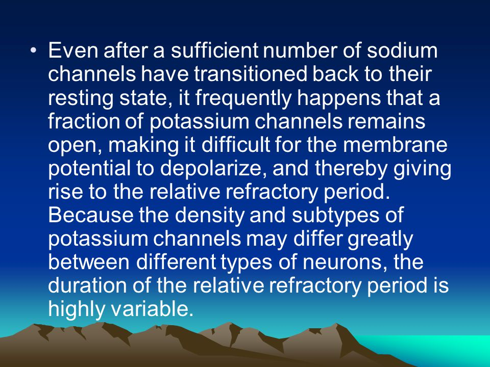 Even after a sufficient number of sodium channels have transitioned back to their resting state, it frequently happens that a fraction of potassium channels remains open, making it difficult for the membrane potential to depolarize, and thereby giving rise to the relative refractory period.