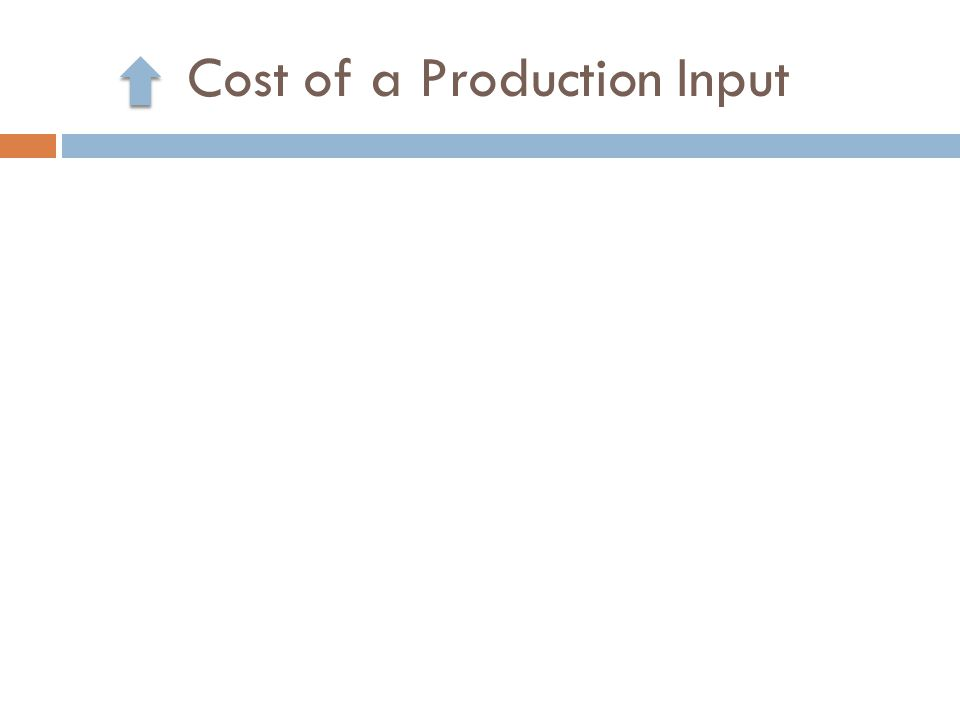 Cost of a Production Input