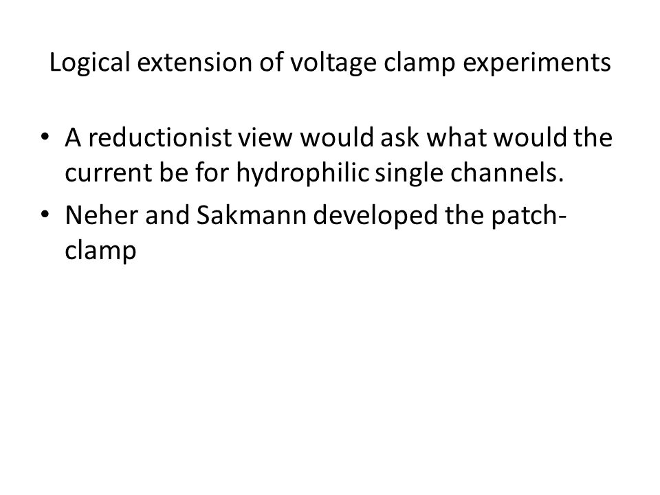 Logical extension of voltage clamp experiments