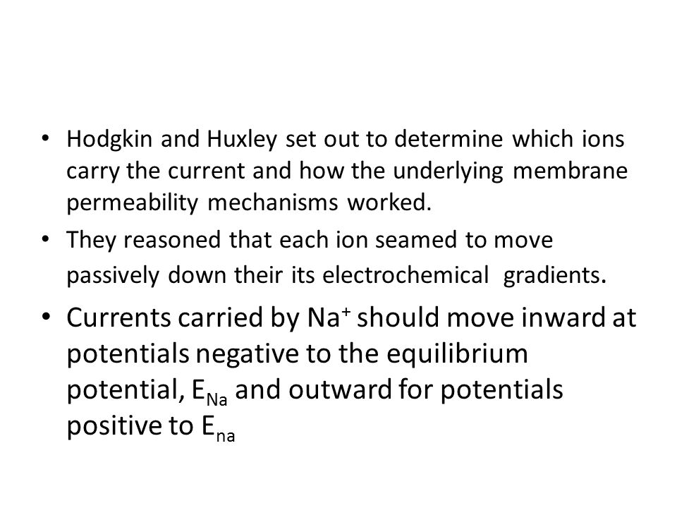 Hodgkin and Huxley set out to determine which ions carry the current and how the underlying membrane permeability mechanisms worked.