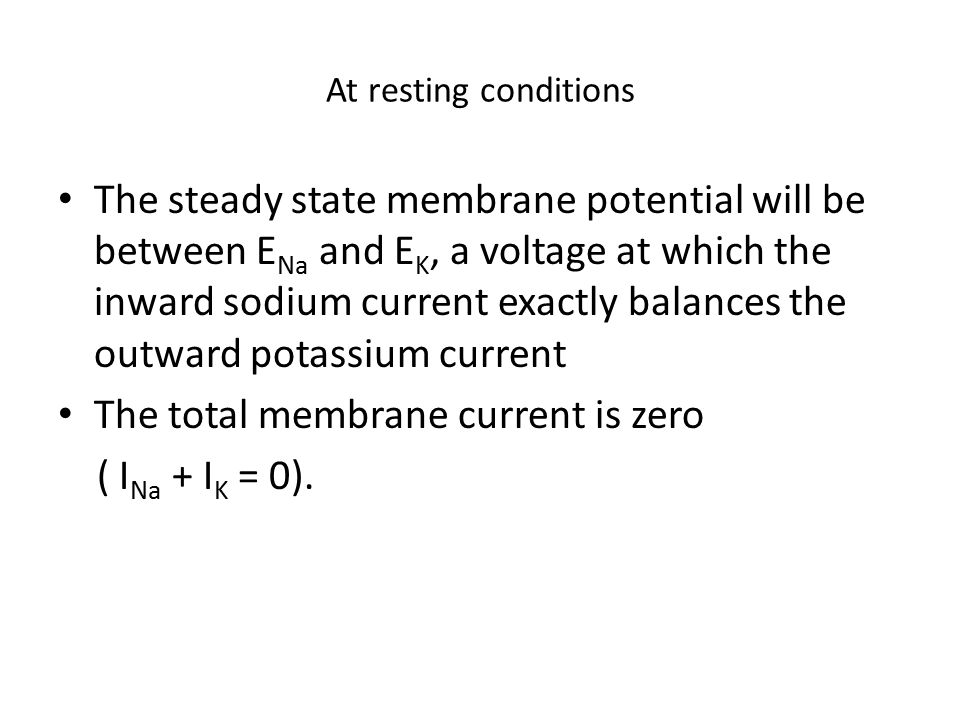The total membrane current is zero ( INa + IK = 0).