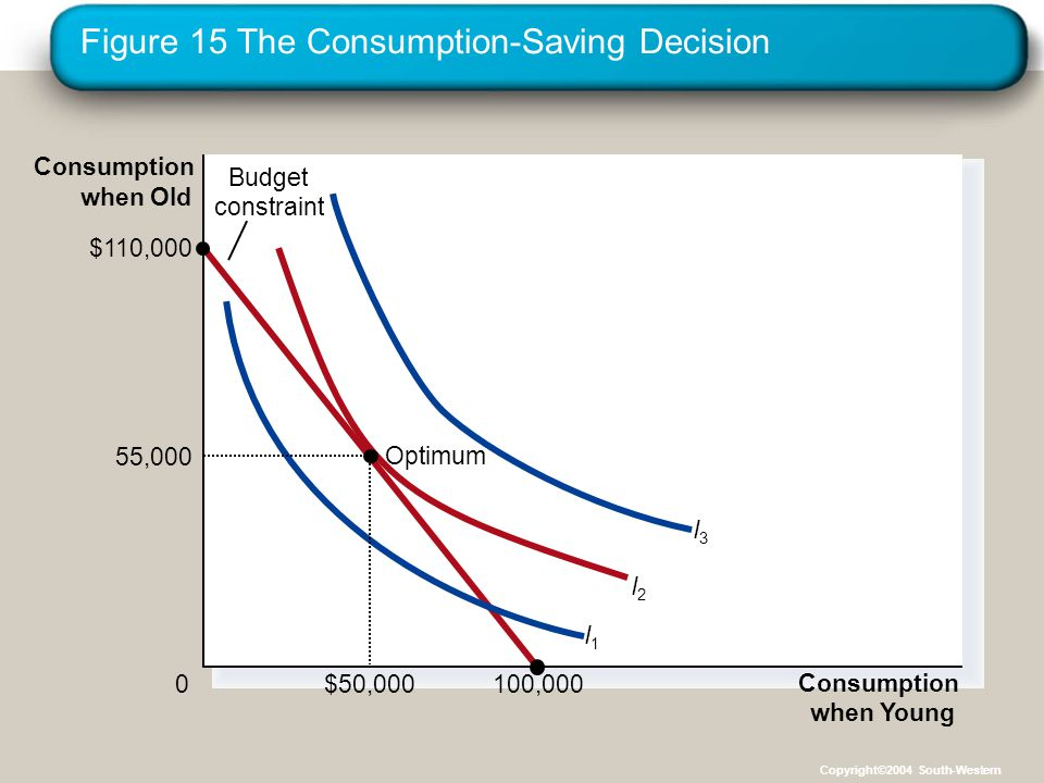 Figure 15 The Consumption-Saving Decision