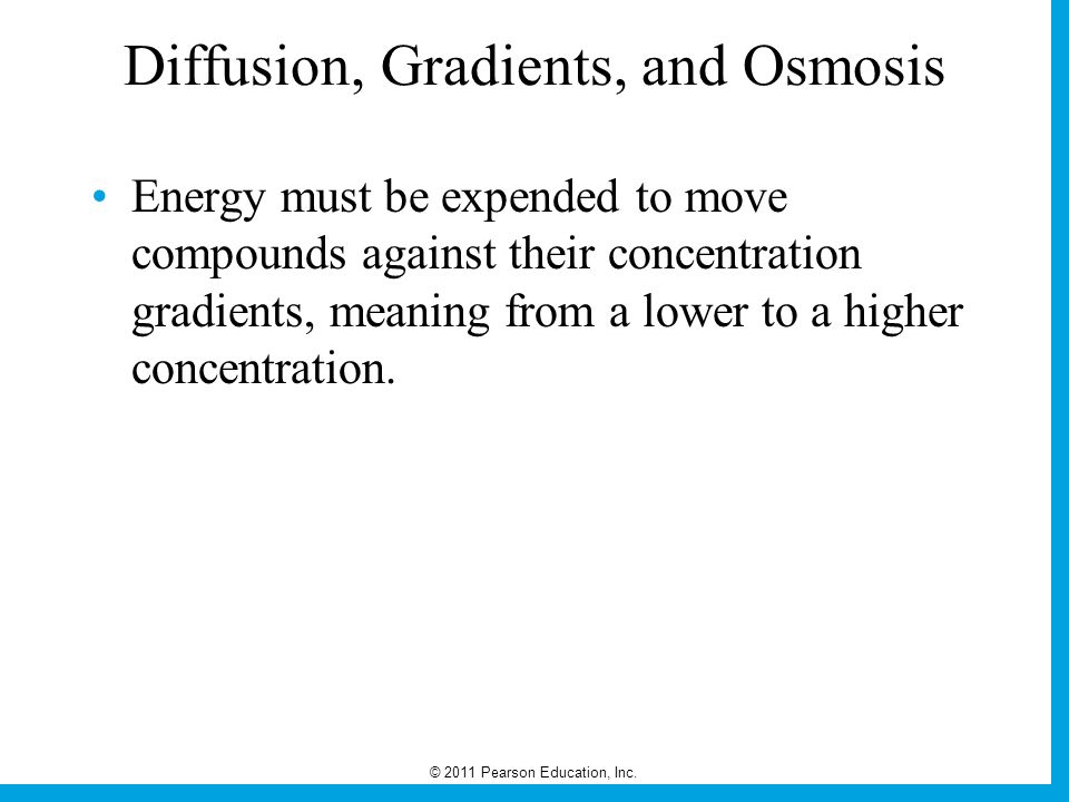 Diffusion, Gradients, and Osmosis