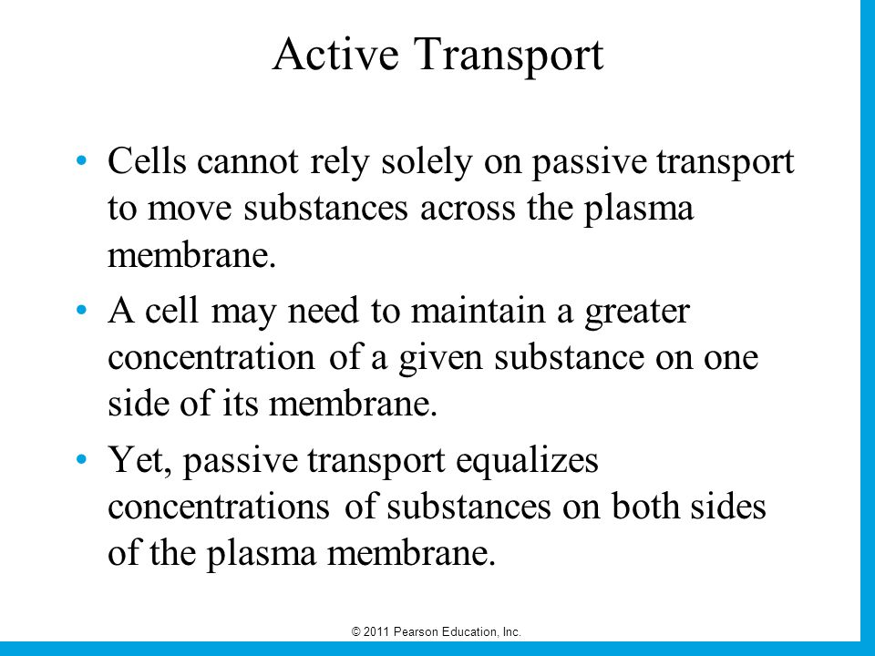 Active Transport Cells cannot rely solely on passive transport to move substances across the plasma membrane.