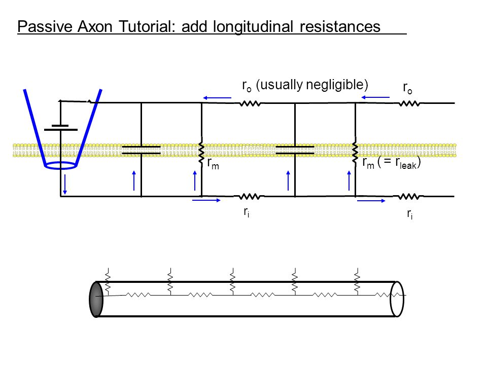 Passive Axon Tutorial: add longitudinal resistances
