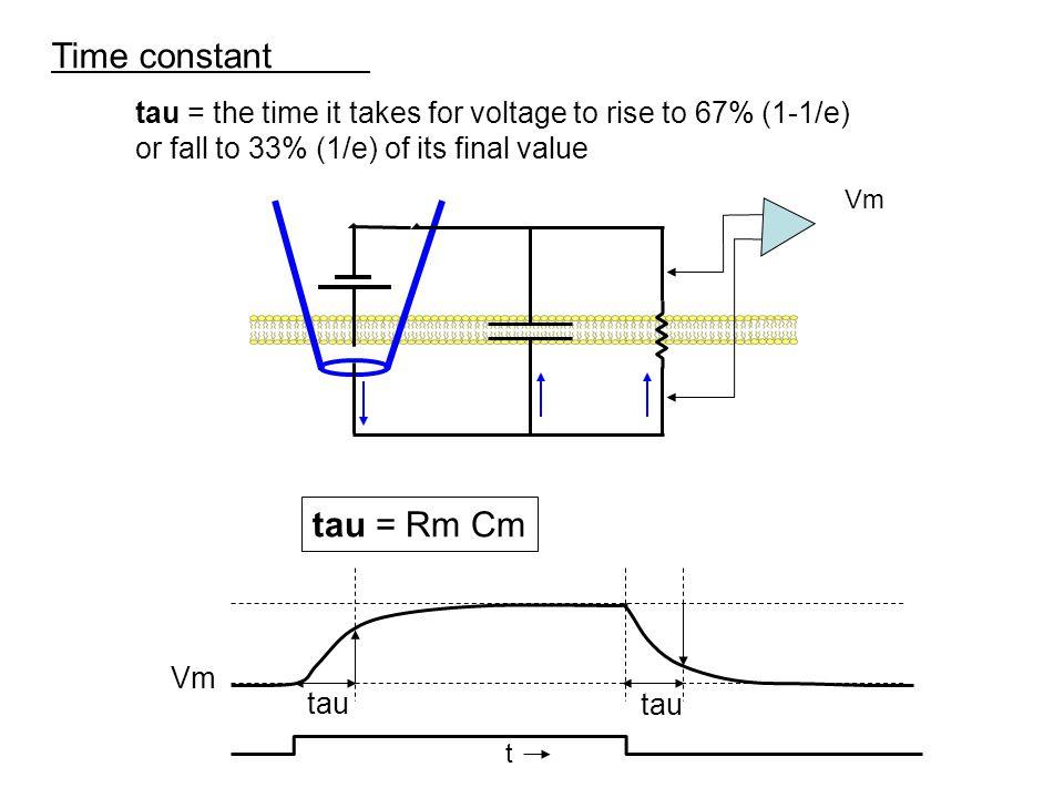 Time constant tau = Rm Cm