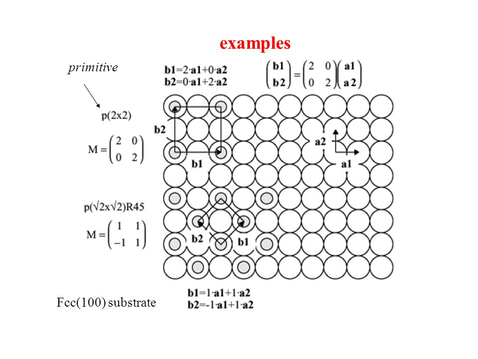 examples primitive Fcc(100) substrate