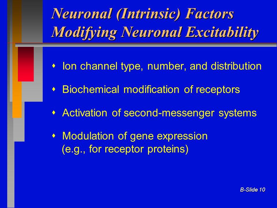 Neuronal (Intrinsic) Factors Modifying Neuronal Excitability