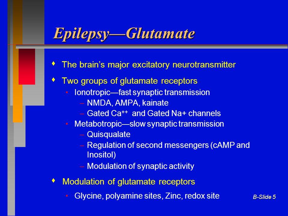 Epilepsy—Glutamate  The brain's major excitatory neurotransmitter