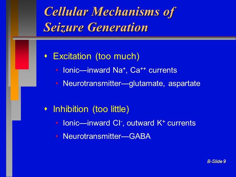 Cellular Mechanisms of Seizure Generation