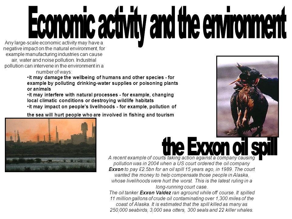 Economic activity and the environment
