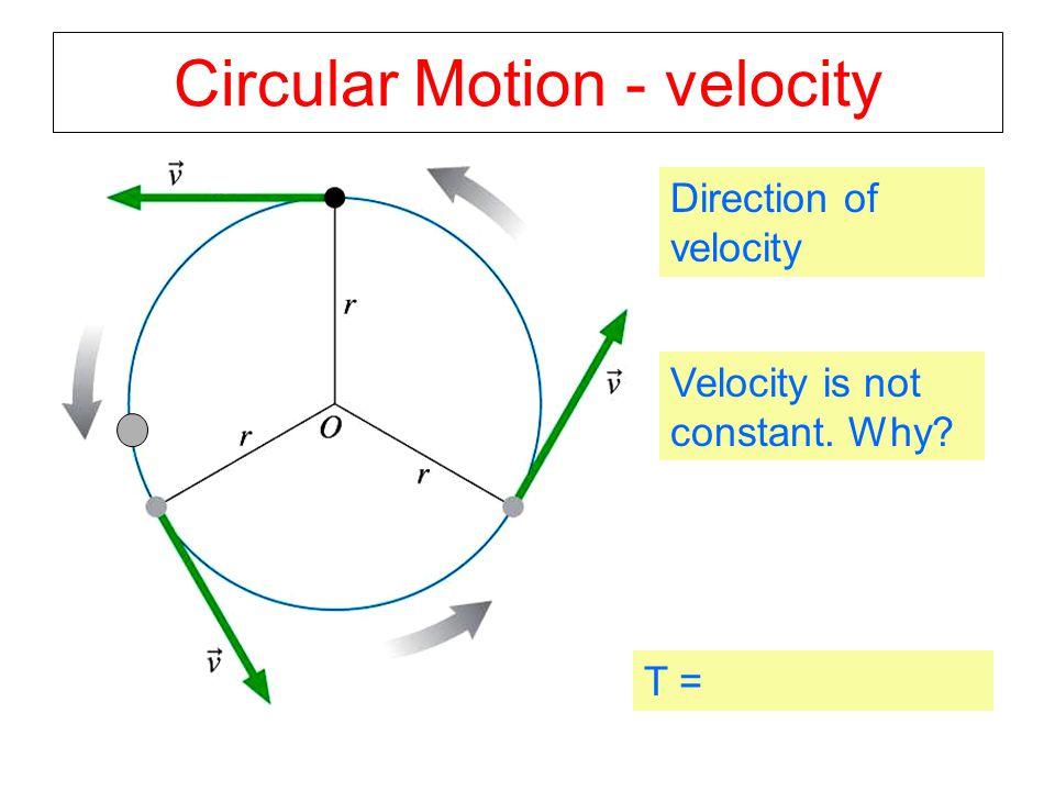 Circular Motion - velocity