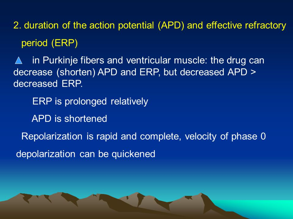 2. duration of the action potential (APD) and effective refractory