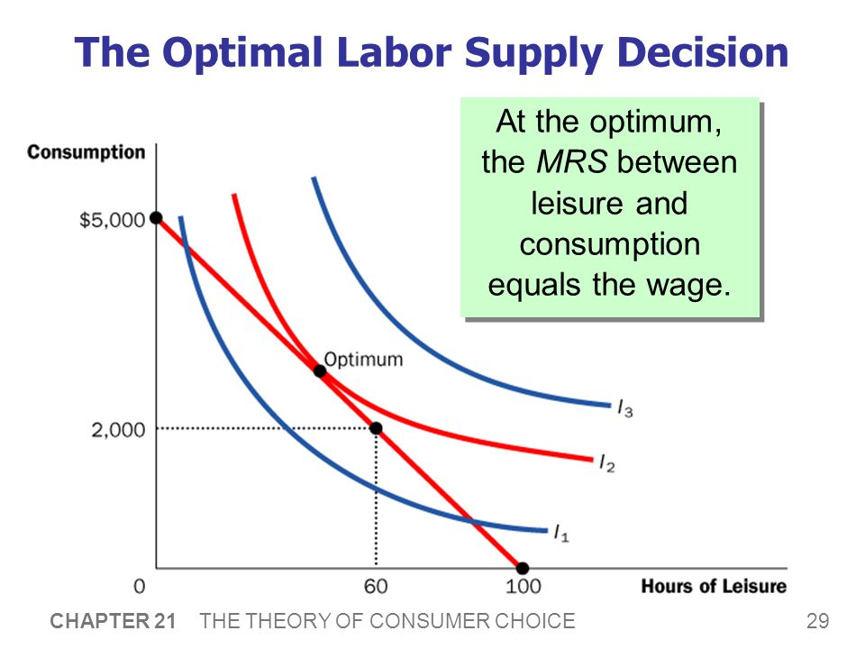 Explaining Wages and Labor Supply