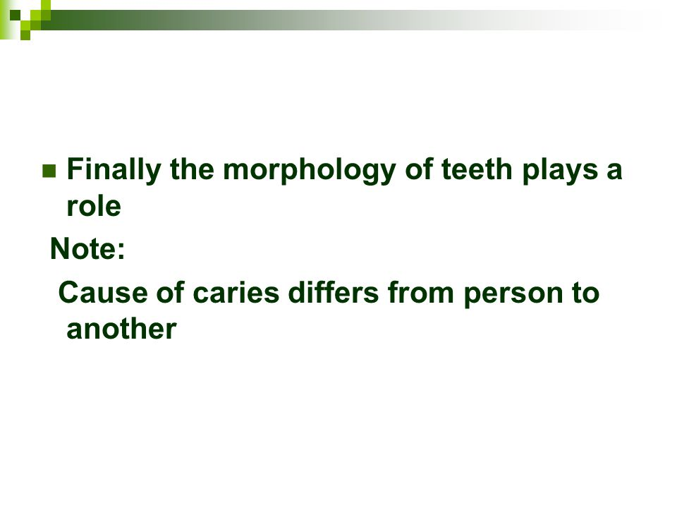 Finally the morphology of teeth plays a role