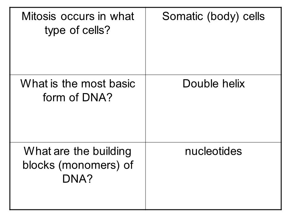Mitosis occurs in what type of cells Somatic (body) cells
