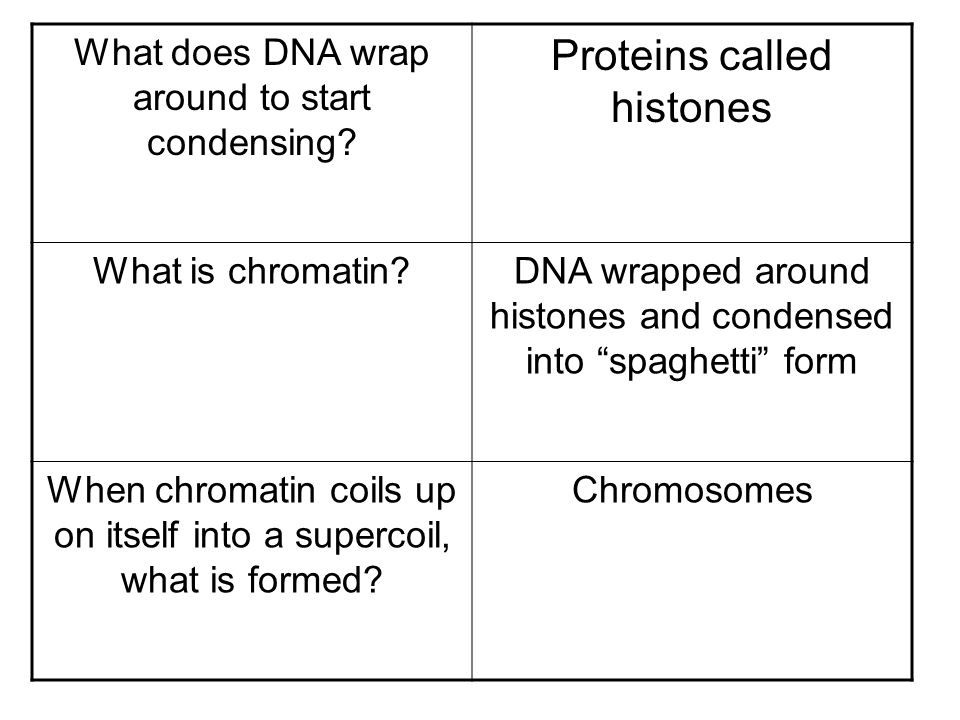 Proteins called histones